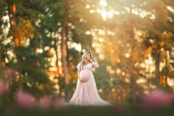 BREE Maternity gown for Photoshoot
